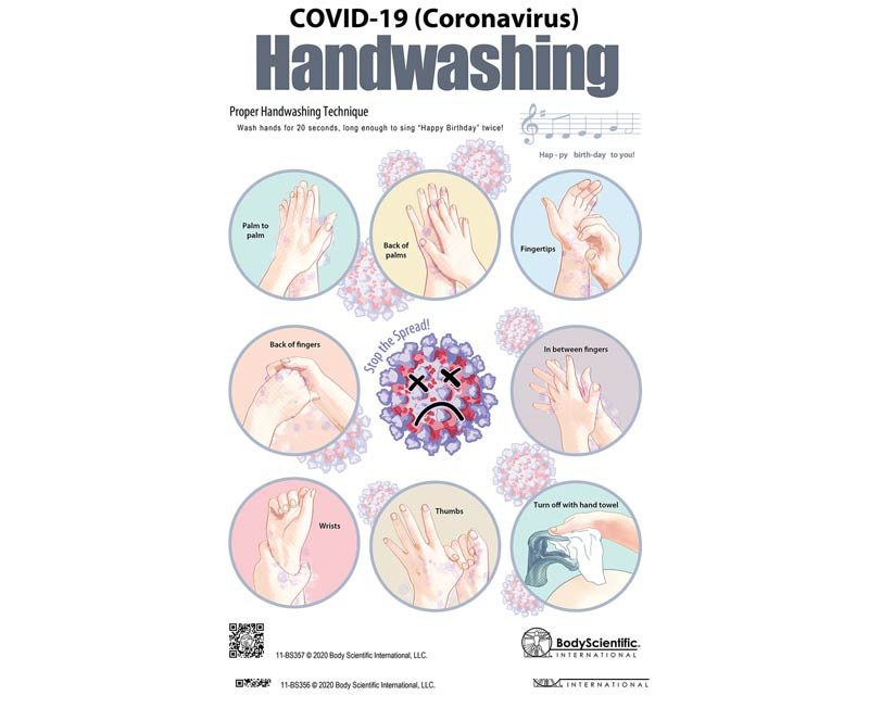 Body Scientific International Handwashing Techniques for COVID-19 (Coronavirus) Poster